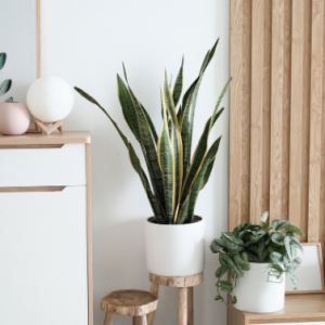 Home décor items in Scandinavian style