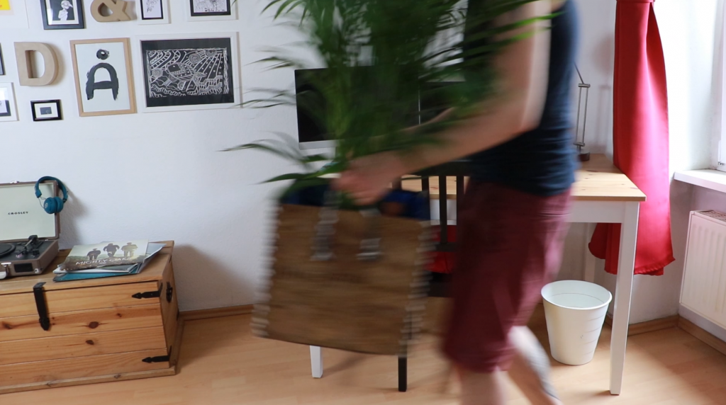 Decorating a home office with a massive plant